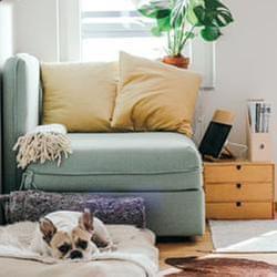 在家要越宅越舒服!第一步輕鬆學收納